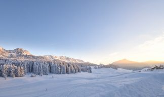 Trasa do wyciągu narciarskiego w Szczyrku